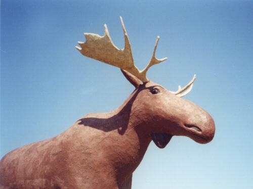 recherche site de rencontre gratuit badoo moose jaw